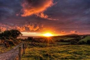 Los caminos al igual que la vida de las personas pueden ir en paralelo,  en cualquier momento cruzarse y formar un solo camino una sola vida.