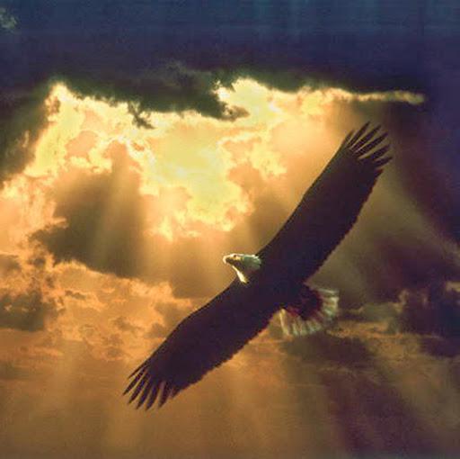 El Águila.