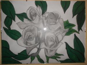 Capullos de Rosas