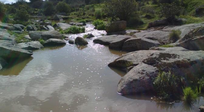 Agua/Vida
