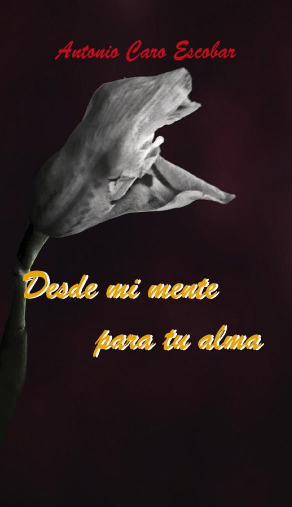 21. RESEÑA DESDE MI MENTE PARA TU ALMA.jpg