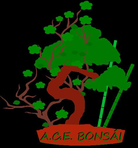 Logo Blog Bonsai.png