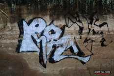 IMG_4343