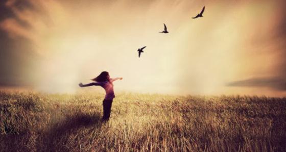Soy un ave libre