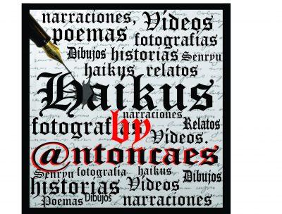 Haykus – Senryus